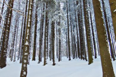 Wejście na Gubałówkę zimą