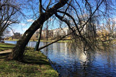 Park Skaryszewski wiosną